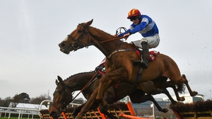 Rocky Blue looks likes to be back in Leopardstown in February