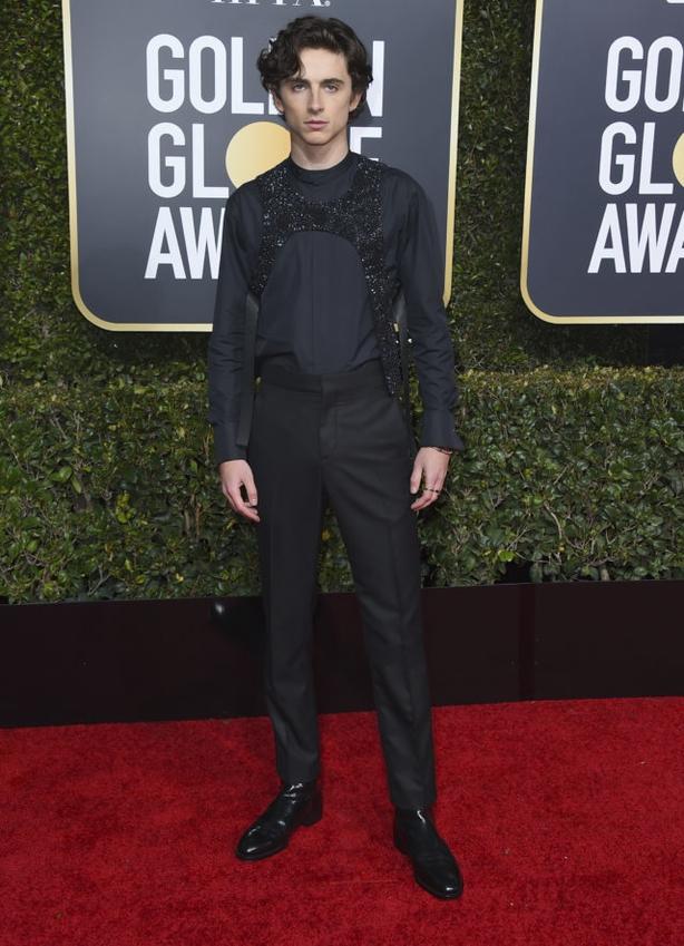 Timothee Chalamet arrives at the 76th annual Golden Globe Awards (Jordan Strauss/AP)