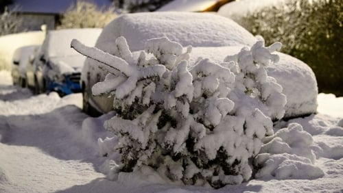 A scrapped Christmas tree and cars are covered by freshly fallen snow in Munich, southern Germany