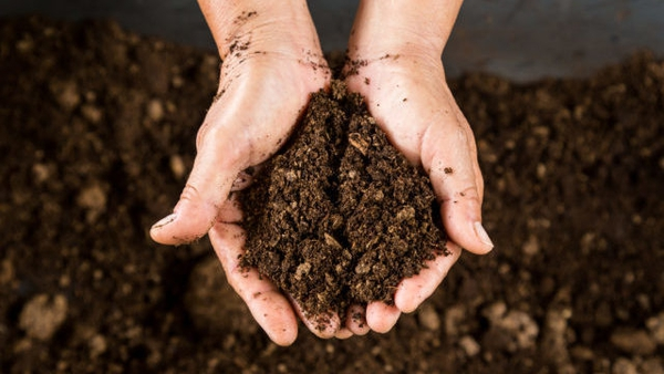 Soil is a complex matrix, and its chemical composition often depends on the location in the landscape, the parent material underneath and the influence of the management above.