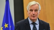 Michel Barnier said the current backstop proposal was the only option