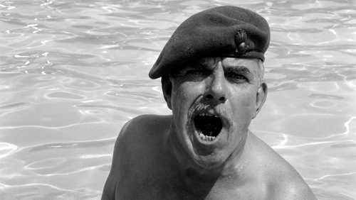 Windsor Davies appeared in two Carry On films