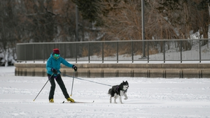 Chloe Adams went for a ski run with her dog Roscoe as wind chills reached -34C in Minneapolis
