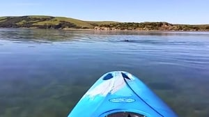 The footage showed someone kayaking in Porpoise Bay, New Zealand
