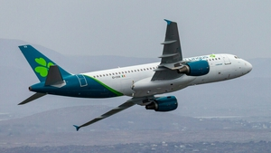 The airline said its passenger revenues fell to €315m from €936m last year