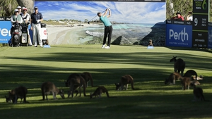 Jeunghun Wang of Korea plays his tee shot on the ninth hole in the company of several wallabies