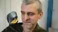 African grey parrot reunited with owner after appeal