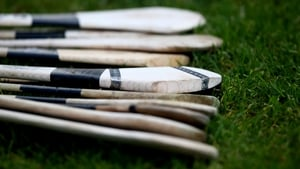 Cathal Dolan's haul of nine points helped Roscommon to victory