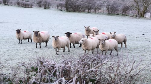 Wintry showers of hail, sleet and snow are expected