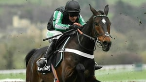Nico de Boinville piloted Altior to his ninth Grade One victory at Cheltenham in March