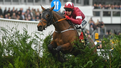 Tiger Roll underwent a procedure to remove a chip in a joint earlier this month
