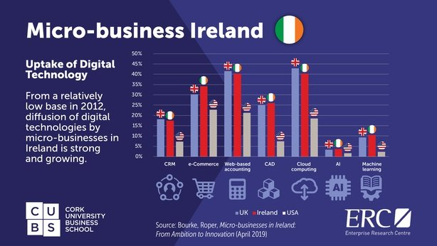 Why Irish small businesses are keen to stay at their current size