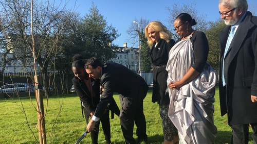 A tree planting ceremony and a commemorative plaque unveiled by the Mayor of Limerick in Clare Street Park