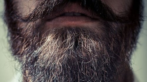 Seven of the men tested were found to have bacteria in their beards which were harmful to humans.