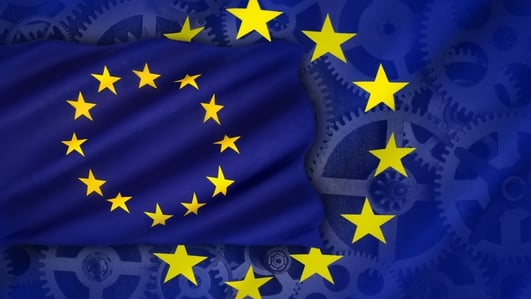 Dublin's EU Constituency - a special report