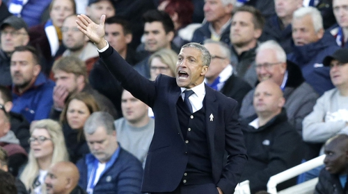 Chris Hughton, Manager of Brighton and Hove Albion