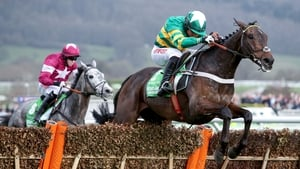 Has Buveur D'Air lost form ahead of the Champion Hurdle?
