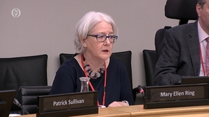 Ms Justice Mary Ellen Ring at the Oireachtas Justice Committee