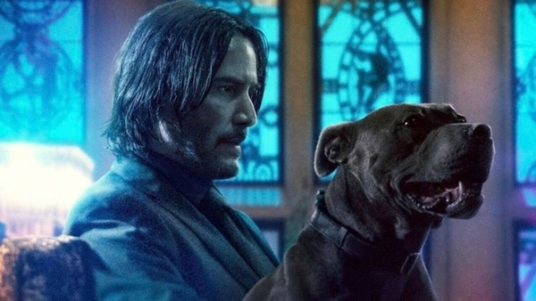 Keanu Reeves as John Wick, taking a brief respite from kicking ass