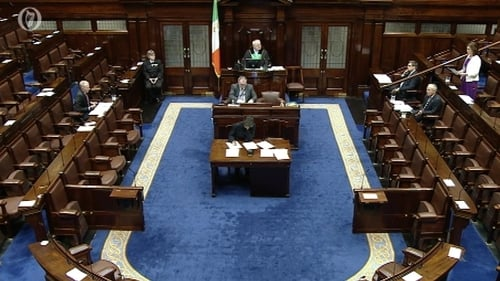 Just six TDs were in the Dáil when the vote came before the House