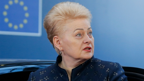 Nine candidates are vying to fill the shoes of two-term incumbent Dalia Grybauskaite
