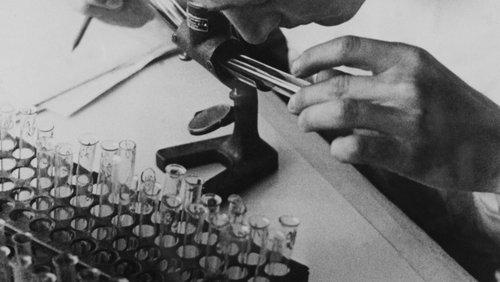 Nazi doctors carried out grotesque human experimentation
