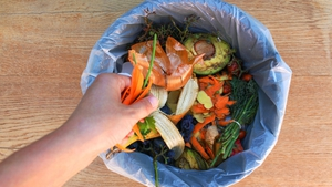 Every household in Ireland is responsible for roughly a third of our national food waste.
