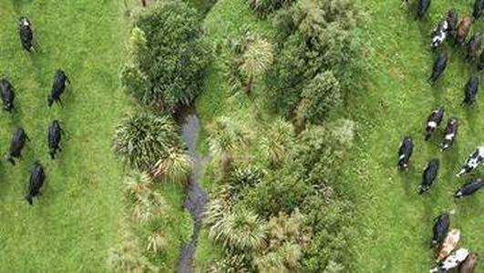 Ireland & New Zealand - Climate Change