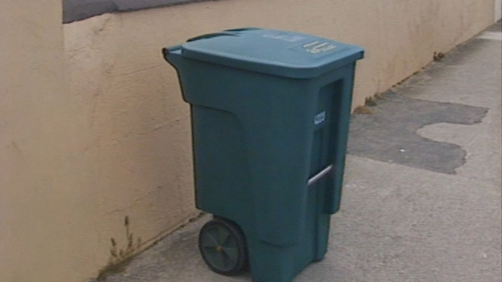 Introducing The Wheelie Bin