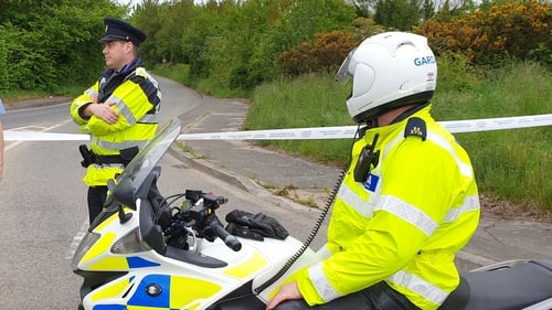 Garda investigation after body found near M1 motorway