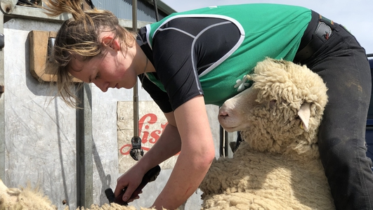 Queen of the Shears looking forward to overseas conquest