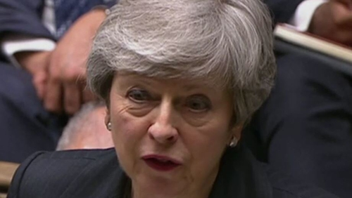Theresa May's premiership was determined by Brexit