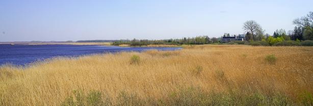 Lake Žuvintas (photo: Twitter / Vaida Pilibaityte)