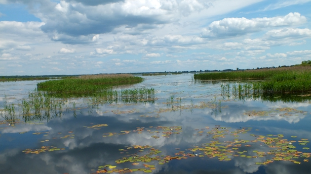 Polesie National Park - Wetlands