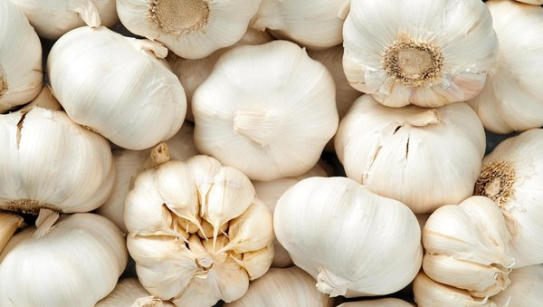 """""""Garlic is a healthy food that may have some antimicrobial properties. However, there is no evidence from the current outbreak that eating garlic has protected people from Covid 19""""."""