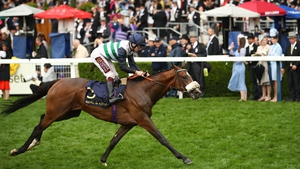 Oisin Murphy wins the Queen's Vase aboard Dashing Willoughby