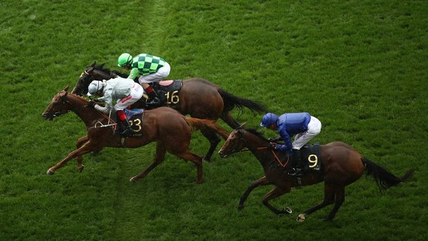 Dashing Willoughby lands touch in Queen's Vase
