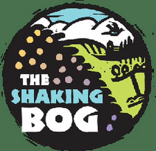 Carlo Gebler at the Shaking Bog Festival