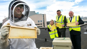 John Cairns (Hibernia REIT), Rod Byrne (Hibernia REIT), Lindsey O'Connell (HubSpot) and Patrick Casey (Bee Green Ireland) at Two Dockland Central with some of the new hives
