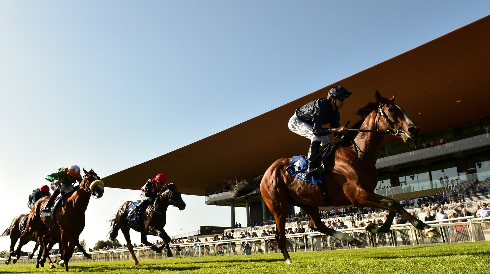 Go Racing in Kildare | Naas, Punchestown & The Curragh