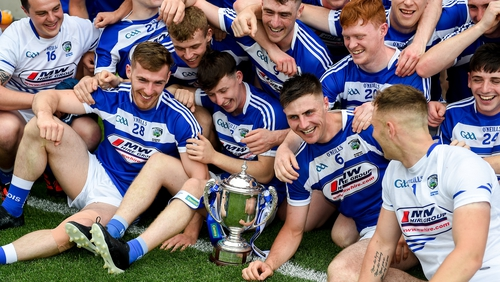 Laois hurlers won the tier two Joe McDonagh Cup this year