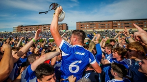 The Laois hurlers are the latest underdogs in Irish sport following their win over Dublin at the weekend