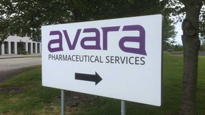 High Court has placed Avara Pharma Group in provisional liquidation