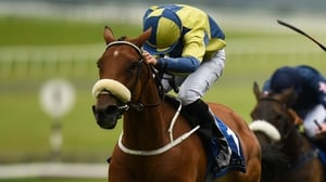 Surrounding claimed the Irish Stallion Farms EBF Brownstown Stakes at