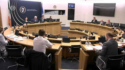 Members of Sport Ireland are appearing before the Oireachtas Committee on Sport