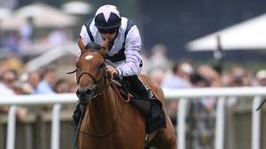 Conditions look set to favour Antonia De Vega