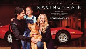 Chance to win tickets to special screening of The Art of Racing in the Rain on August 3