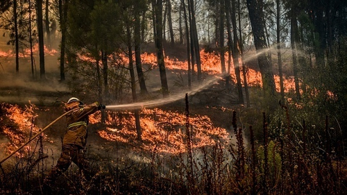 Nearly 1,300 firefighters backed by 17 water-dropping aircraft were deployed to fight the blazes