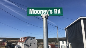 Road sign in Branch, Newfoundland (Pic: Michael Fortune)