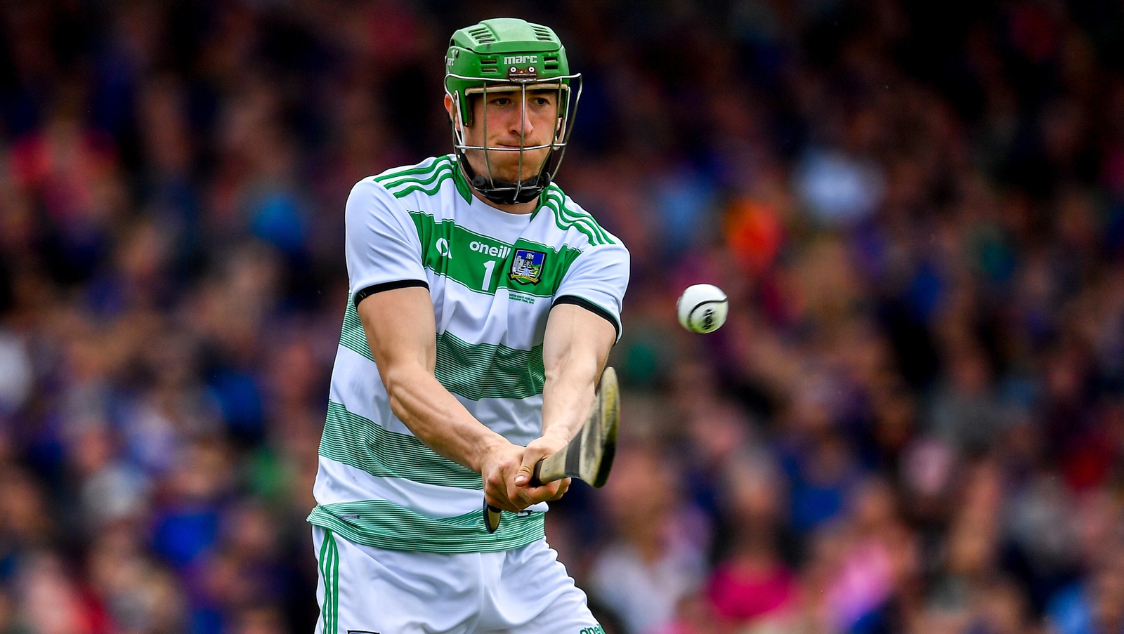 Image - Nickie Quaid made his Limerick debut in 2010 as an outfield player